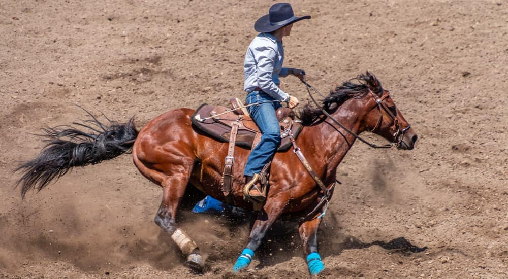 A cowgirl is riding a horse around a barrel at the Rodeo in Mesa, AZ.