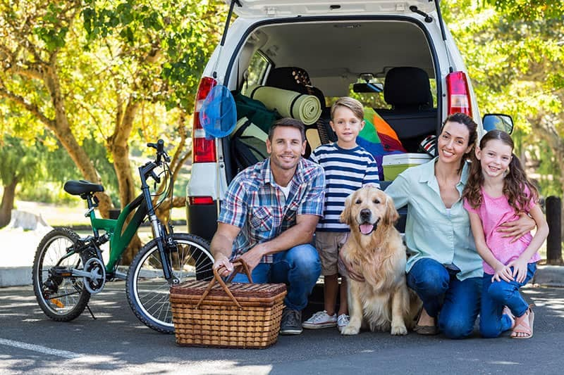 Family picnic with SUV, they have a bike and dog