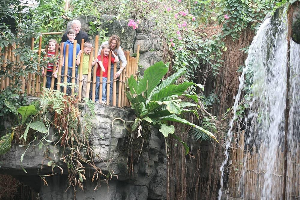 From Site Omaha Zoo Indoor Rainforest