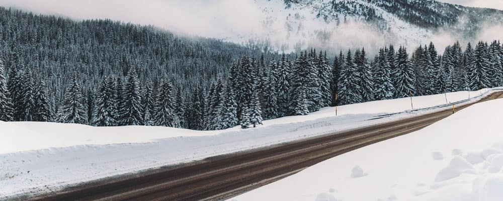 Cleared Road Surrounded by Snow During Winter