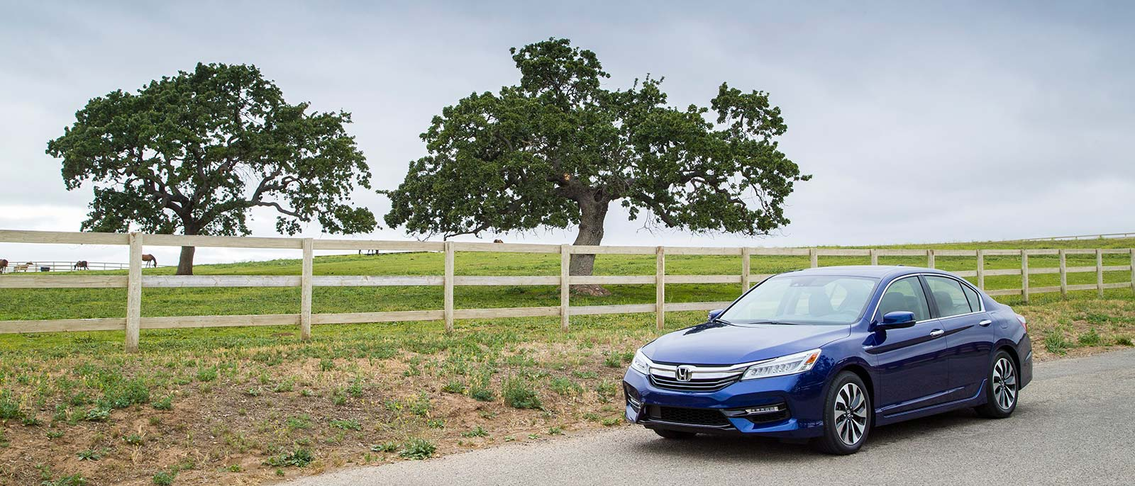Accord Hybrid On Rural Road