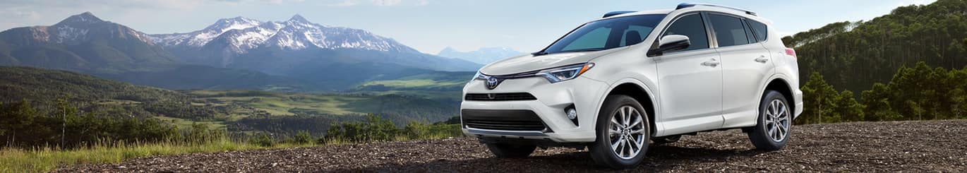 New 2018 Toyota RAV4 South Carolina