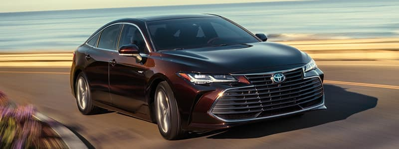 Columbia SC New 2019 Toyota Avalon