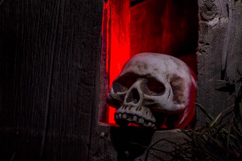 Scary Halloween skull sitting in window of old abandoned wood building with red light