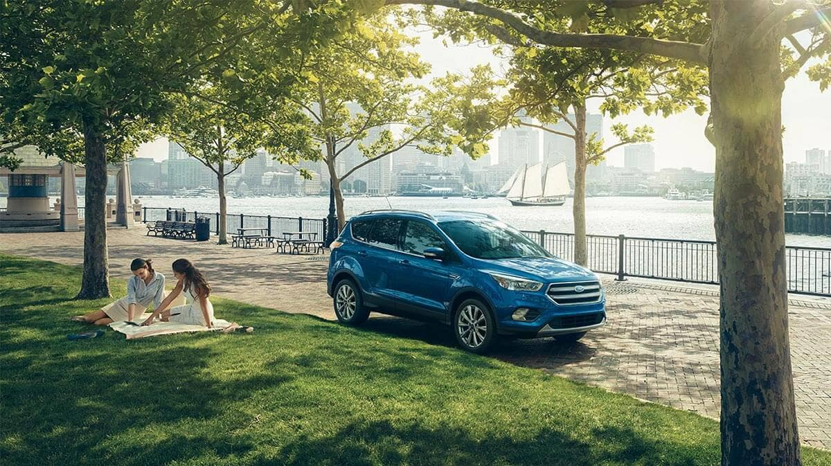 2018 Ford Escape in the forest