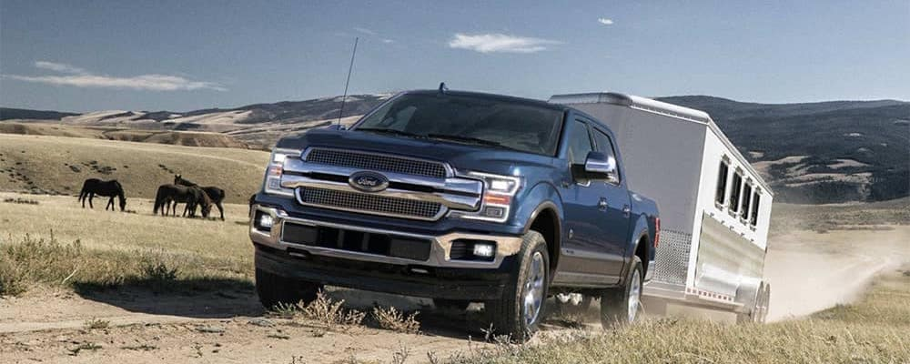 2019 Ford F-150 towing trailer on dirt path with horses in background