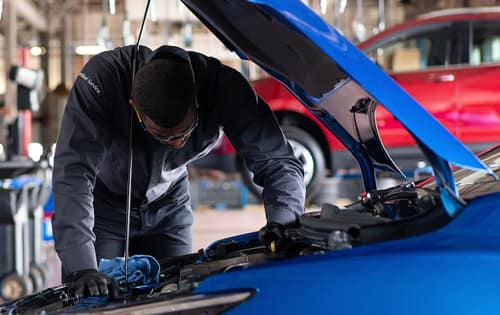Battery Replacement Program