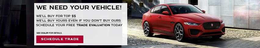 We Need Your Vehicle! - We'll buy for top $$ - We'll buy yours even if you don't buy ours - Schedule your free trade evaluation today