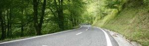 forest-road
