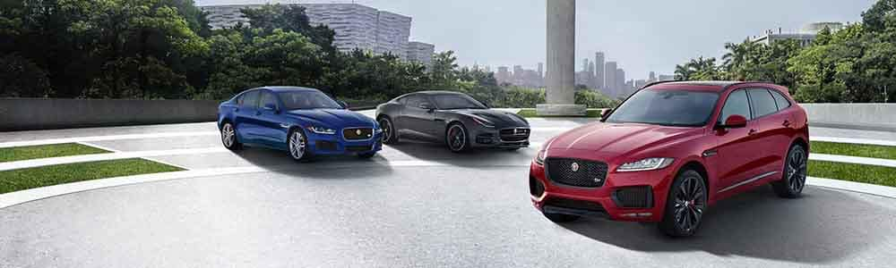 Jaguar Models lined up