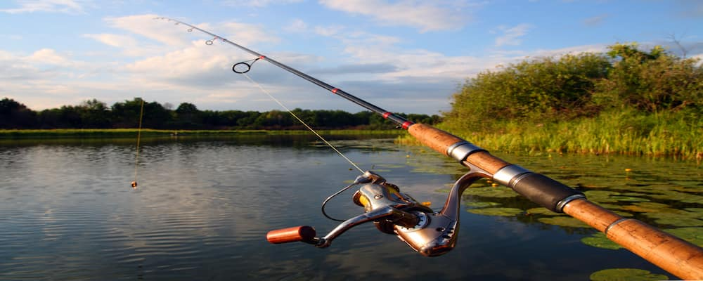 fishing rod on lake
