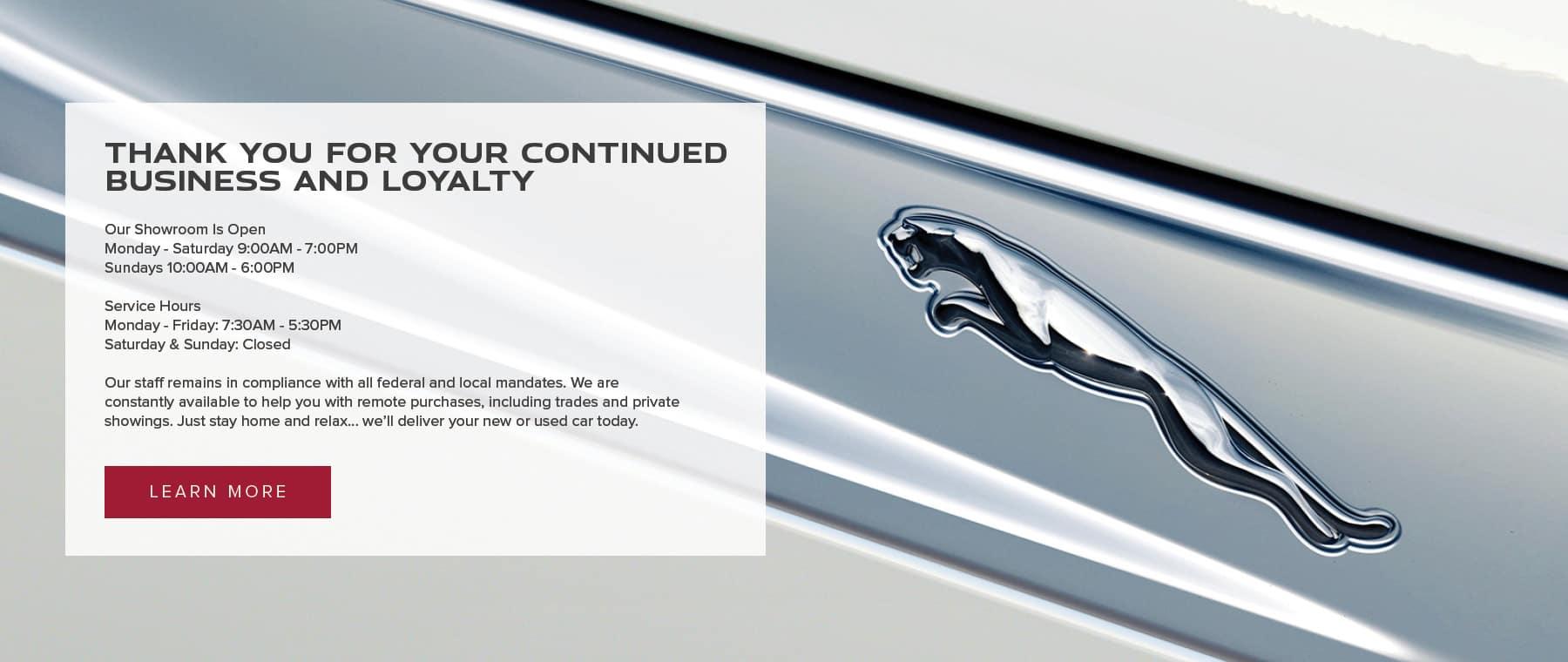 Jaguar MV Contact Info