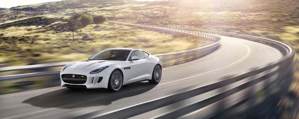 Jaguar Driving on road