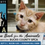 Bucks County SPCA Barn Bash 2019