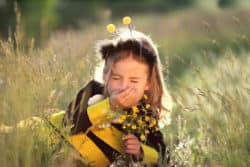 Little Bee Fall Allergies
