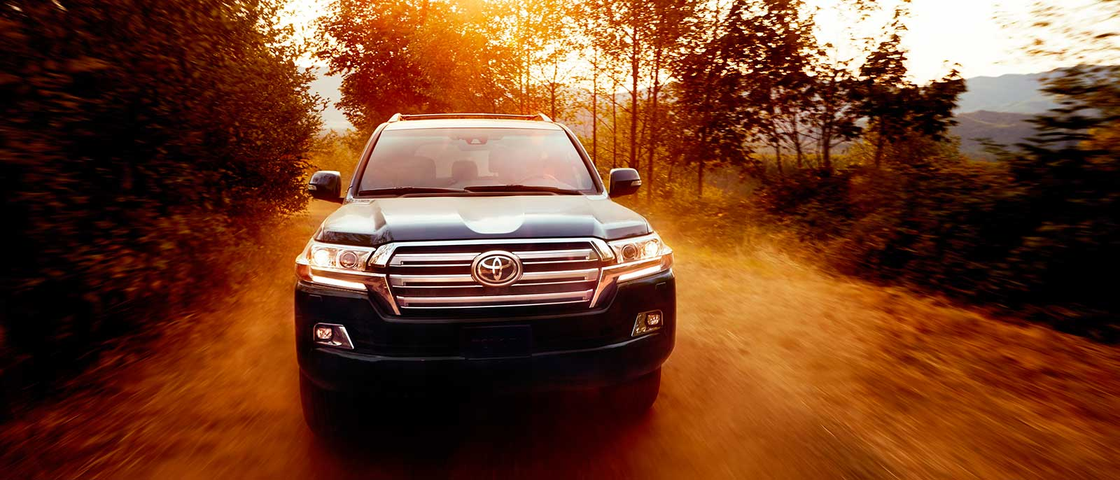 2017 Toyota Land Cruiser in the forest