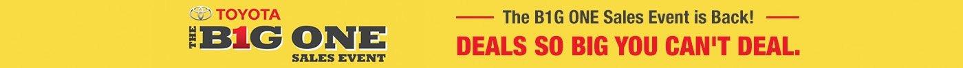 Big One Sales Banner