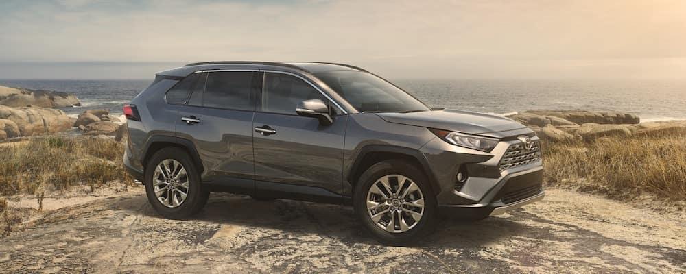 2019 Toyota RAV4 in Gray