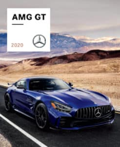 my20 amg gt group