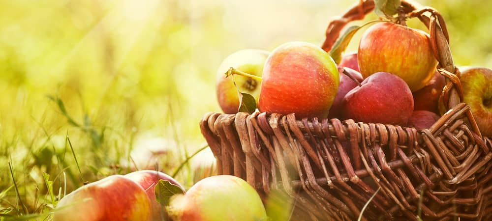 Organic apples in a basket outside with rays of sunlight