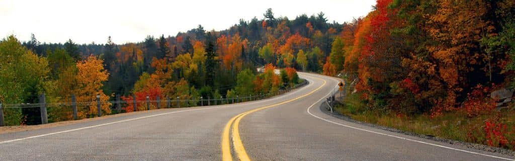 Fall road background