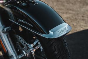 Harley-Davidson® Tri Glide® Ultra fender