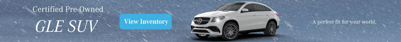 GLE Winter