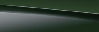 825 - Deep Green Non-Metallic