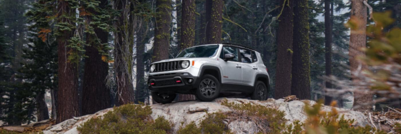 White 2019 Jeep Renegade in woods