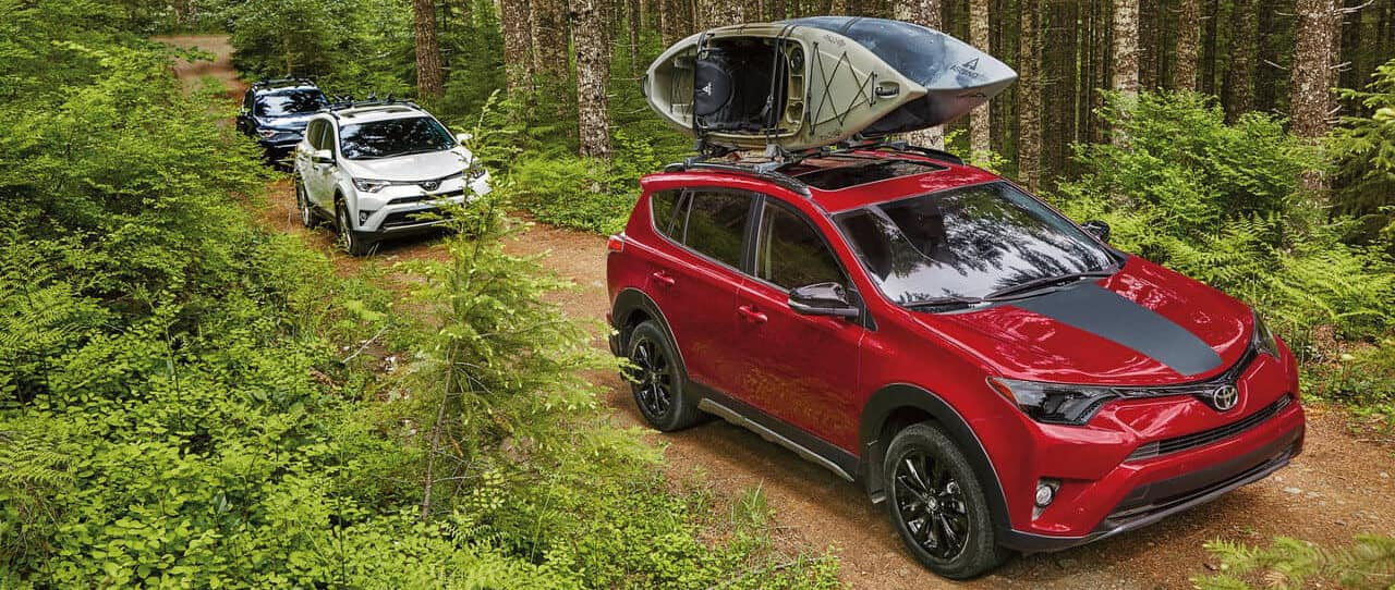 Which Toyota RAV4 Models Have AWD? | RAV4 AWD | Savannah Toyota