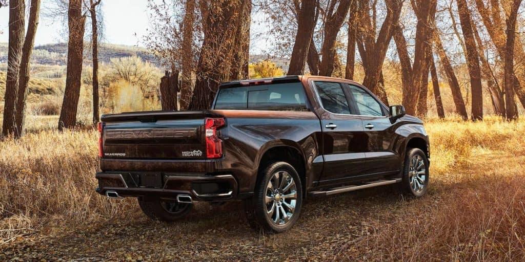 2019 Chevrolet Silverado 1500 back view