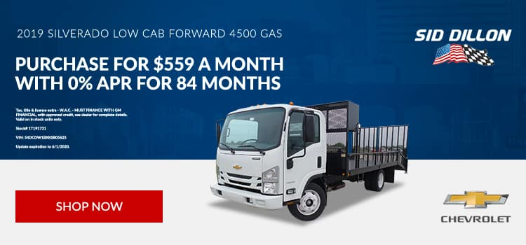 2019 Chevrolet 4500 LCF Gas RWD Regular Cab