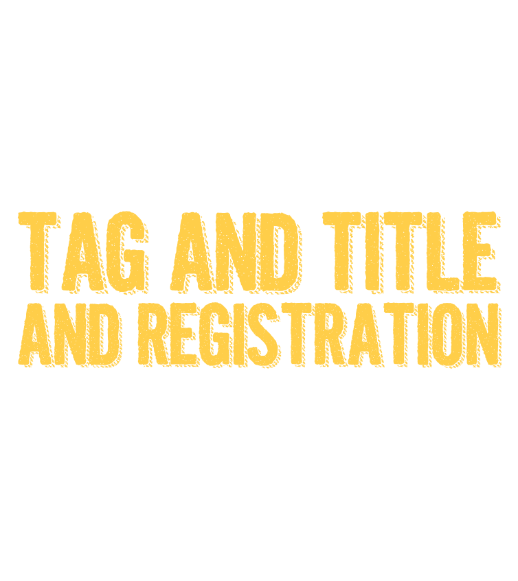 Let Freedom Ring with your tag and title and registeation on us!*